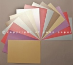 Centura Pearl Assorted Pastel Shades A4 310gsm
