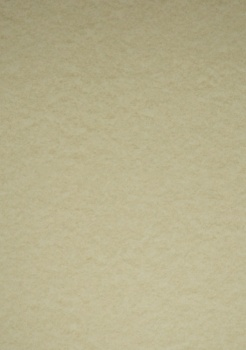 Parchment Card 175gsm  Cream Bulk Buy