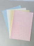Parchment  Paper Assorted Shades A4